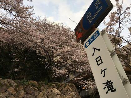 20170408_echizen_004.jpg