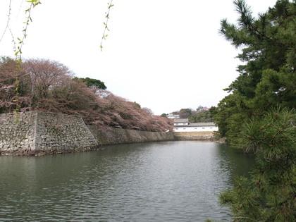 20100403_07_iroha.jpg