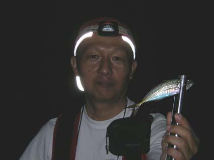 20100822_nobby_aji.jpg