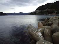 20111022_wakasa.jpg
