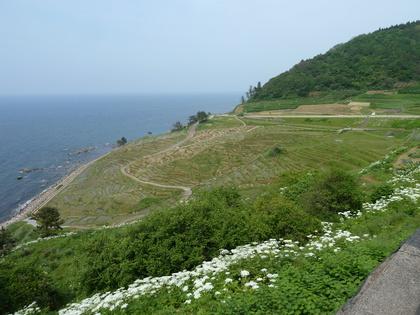 2012052627okunoto-001.JPG