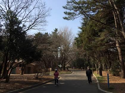20150322_narimasu005.jpg