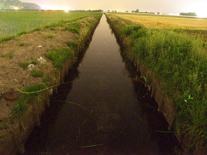 20100611_hotaru_koujin01.jpg