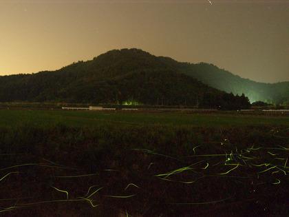 20100611_hotaru_koujin06.jpg