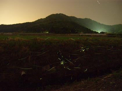 20100611_hotaru_koujin07.jpg