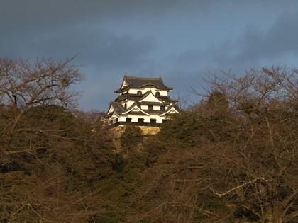 20120211_hikone_pota_05.jpg