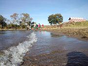 20121104_biwako_cleanup_005.jpg