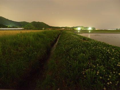 20140524_hotaru_002.jpg