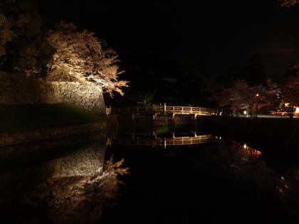 20100410_yozakura_04_s.jpg