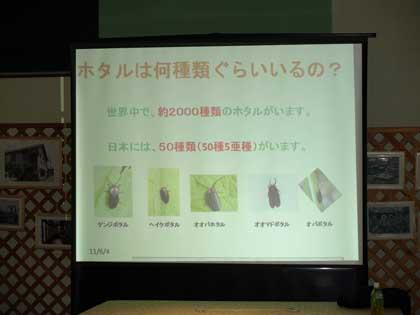 20110604_hotaru_watching02.jpg