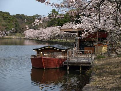 20120413_castle_hikone_65.jpg