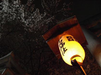 20120414_amago_011.jpg