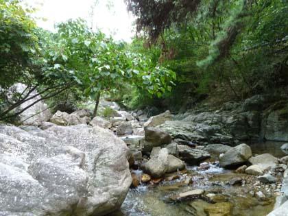 20120916_river.jpg
