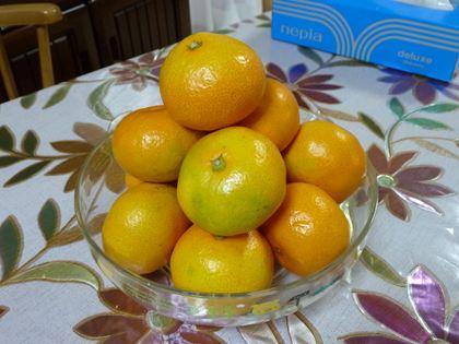 20121103_MandR_orange_001.jpg