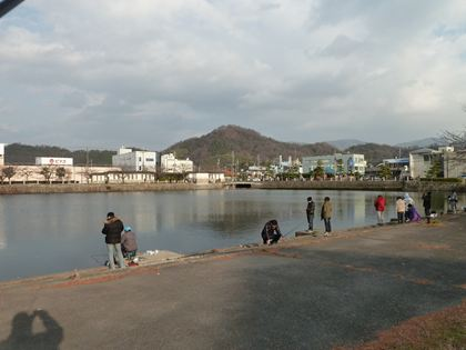 20130102_hikone_port005_R.jpg