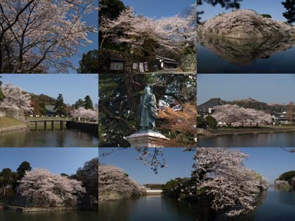 0414_castle_hikone.jpg